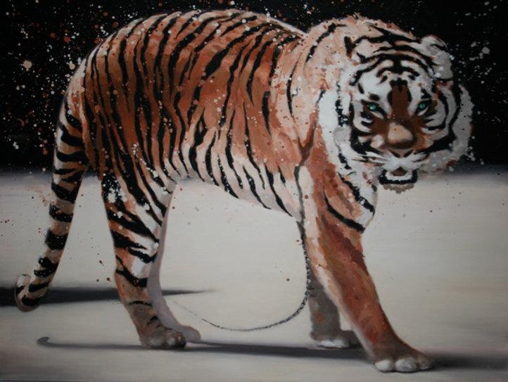 Tiger - Gladiater 2006 56x77
