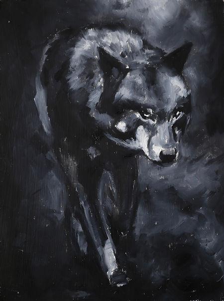 5wolf8x6.jpeg
