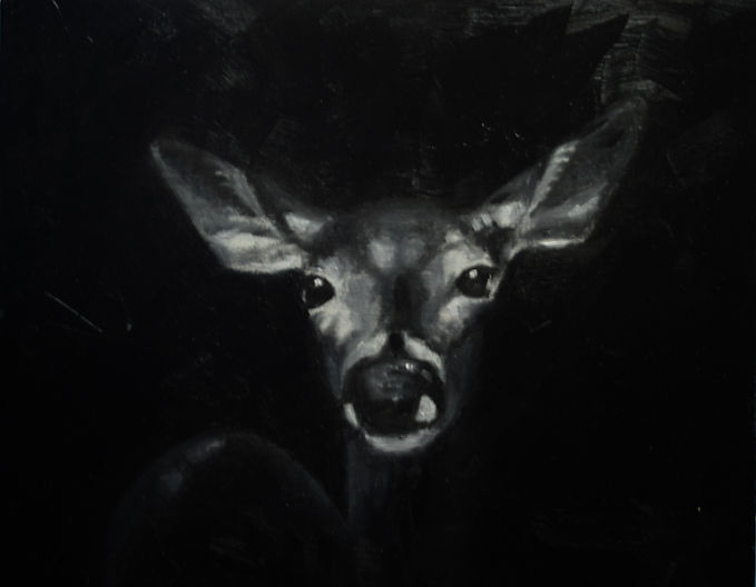 Deer at Night8x10.jpg