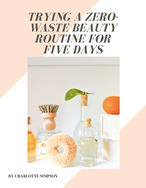 zero waste beauty bubble. magazine