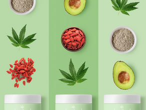 Hey Bud! How a hint of hemp will keep your skin hydrated this season