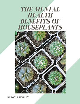 mental health houseplants bubble. magazine