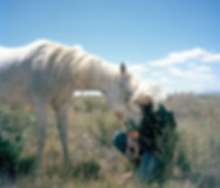A woman shows her love to her horse in the field