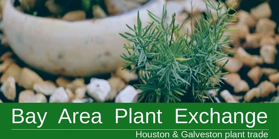 BAY AREA PLANT EXCHANGE AND PET ADOPTIONS