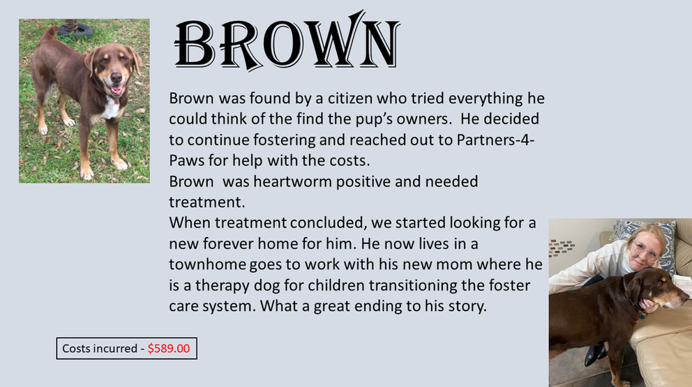 brown today.png