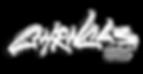 chrncls_2018_vlog_logo.png