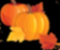 pngfind.com-pumpkin-emoji-png-1998485.pn