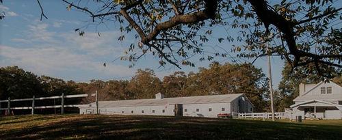 farm (3).jpg