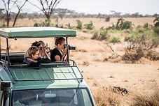 Serengeti safare.jpg