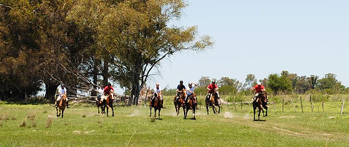 Estancia_Ride_Argentina (2).jpg