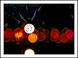Switzerland_My other Half_Spiderweb
