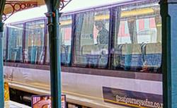 New Zealand_finally we saw the train