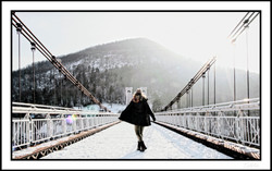 Free as freedom_On the bridge of love co