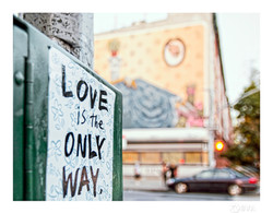 WDILNY_Day 6_Love is the only way