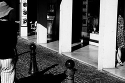 camargue_black and grey