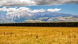 New Zealand_the new zealand_from far awa