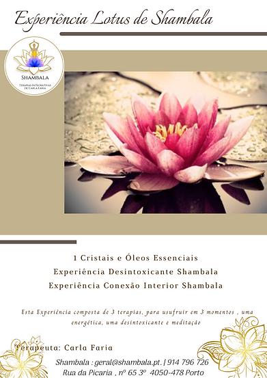 Flyer Experiência Lotus de Shambala.png