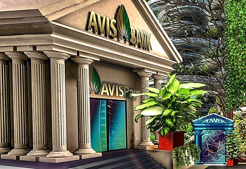 AVIS Bank Network.jpg