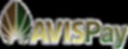 AVISPay3D_4x.png