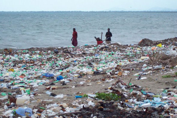 Haitian-coast.jpg