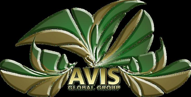 AVISGlobal.png