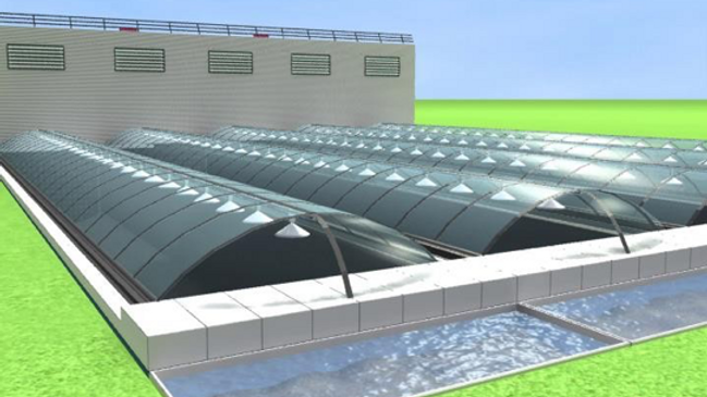 Scalable Fish Growing Farm