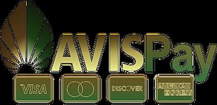 AVISPayButtone_3x.png