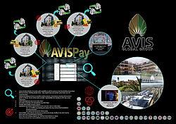 AVISPayBack.jpg