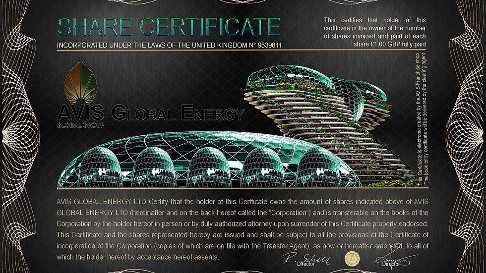 Share Certificate AVIS Global Energy for Franchise