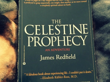 """Celestine Prophecy """"Be in the flow"""" meditation"""