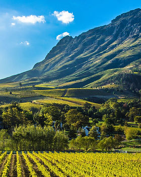 cape-winelands-south-africa-1600x900.jpg