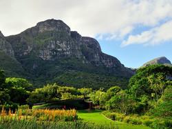 kirstenbosch-national-botanical-garden-cape-town-south-africa-corbin17-alamy