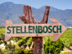 Travel-solo-stellenbosch-1