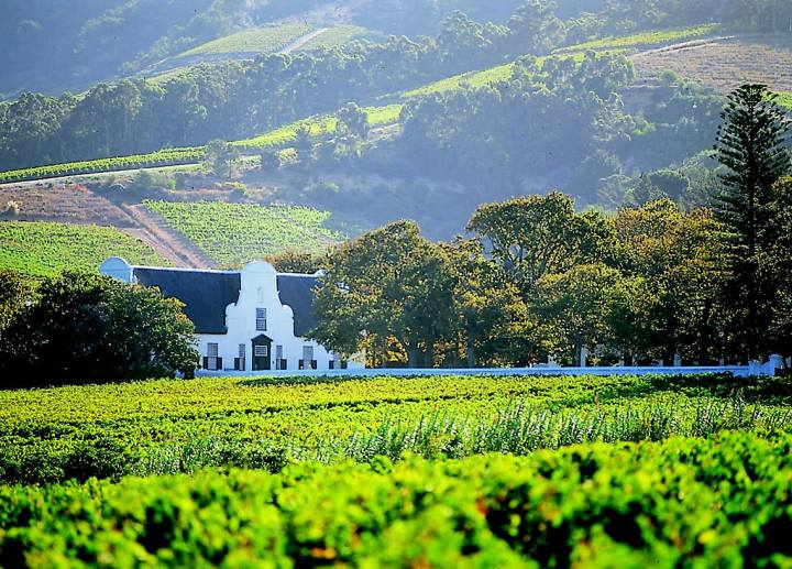 constantia-winelands-big-720x517