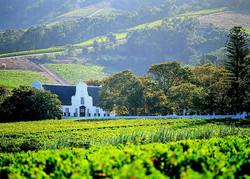 constantia-winelands-big-720x517