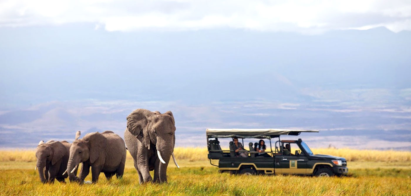 african-safaris