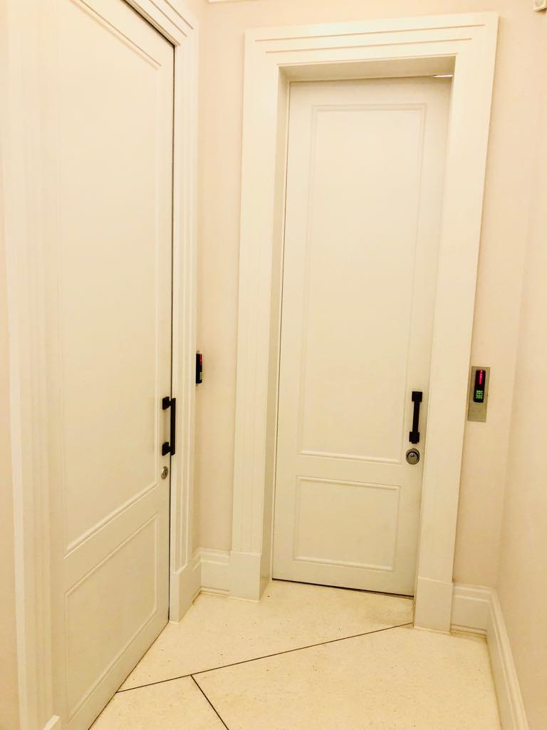 Luxury security doors