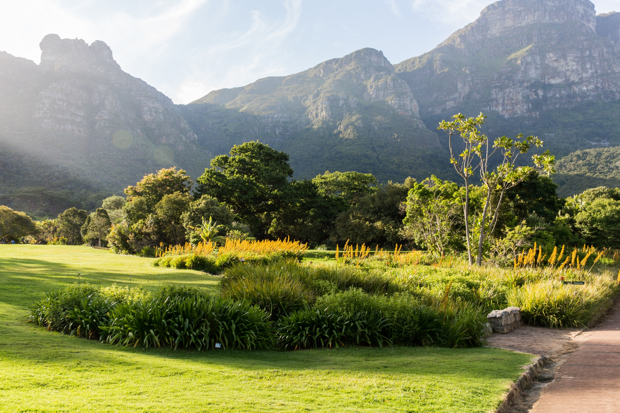 blogs2048x1365_how-to-plan-your-visit-to-kirstenbosch-national-botanical-gardens