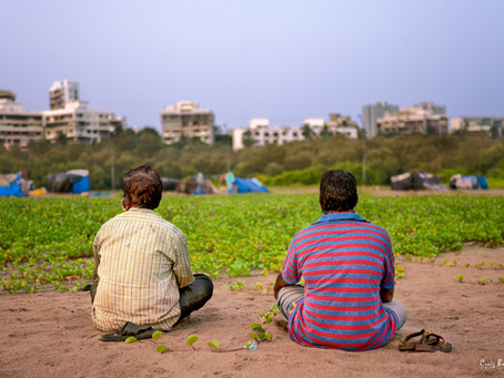 Versova Methi Farmers Back In Action