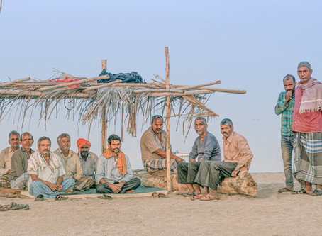 Have These Methi Farmers Returned To Uttar Pradesh?