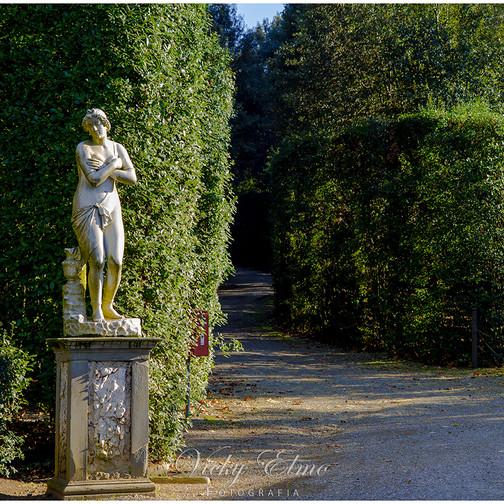Estatua y pasillos