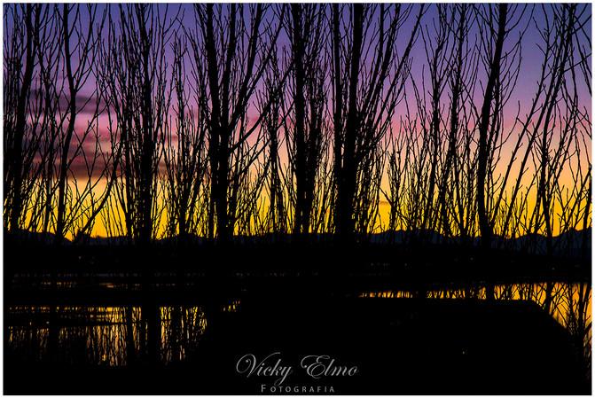 Atardecer Lago Argentino.jpg
