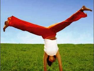 Ergonomia em casa, no trabalho e na vida: Os bons hábitos!