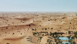 RCR x Dubai