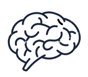 Brain.jpg.png
