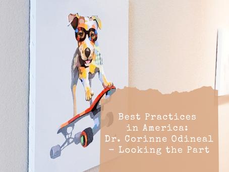 Best Practices in America #3