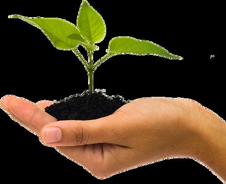 soil_PNG56.png