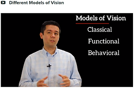 Different_Models_of_Vision_Emergent.png