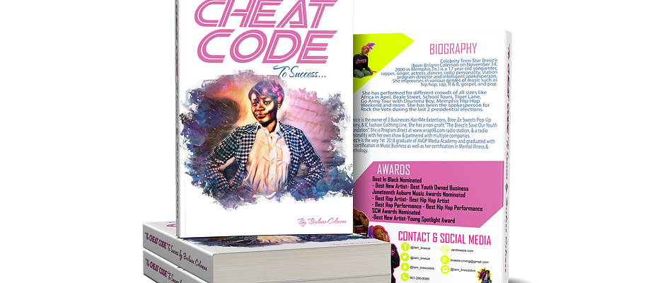 The Cheat Code to Success : Book