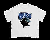 BRISS01.png